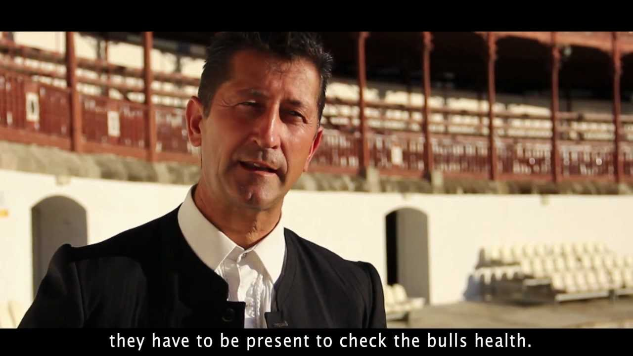 Being a Torero (Documentary about bullfighting)