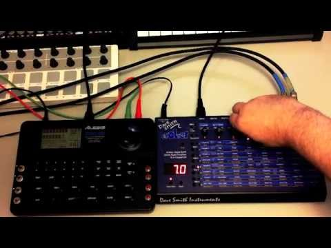 Country Fried Crunch (Bent SR 16 and DSI Evolver Jam)