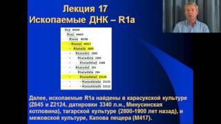 """""""Практический курс ДНК-генеалогия"""" - лекция 17"""