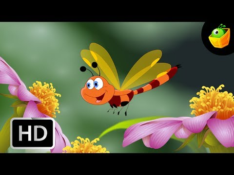 Thambiyum Thumbiyum - DragonFly - Children Tamil Cartoon Songs Chellame Chellam Volume 5