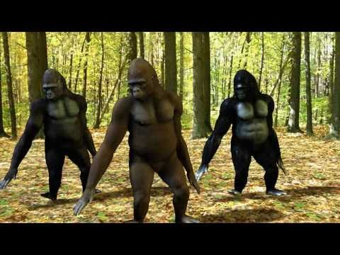 Ego - The Crazy Things We Do Official Music Video (Dancing Gorillas),
