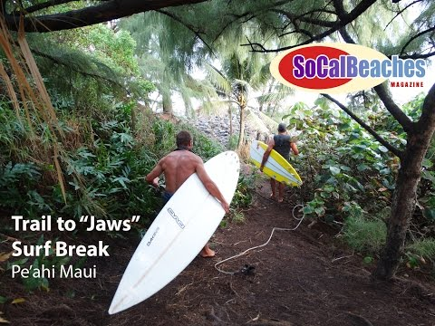 The Trail to ''JAWS'' Surf Break Pe'ahi Maui Hawaii
