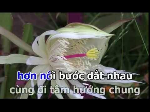 Nhạc đời - Ben song cho ( chế lời đạo & Trình bày : Thanh Tân - karaoke( ngắt tiếng được)