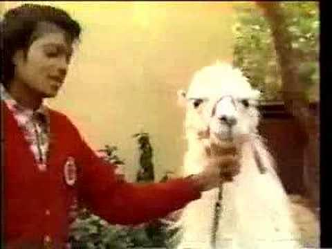Michael Jackson and Louie the Llama, Rare footage of an early 80's Michael Jackson introducing his llama Louie at his familie's Encino home.