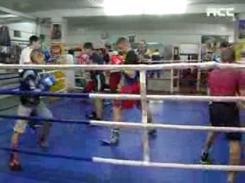 Буковинський бокс
