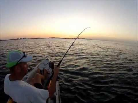 Kayak shark fishing destin youtube for Destin shark fishing