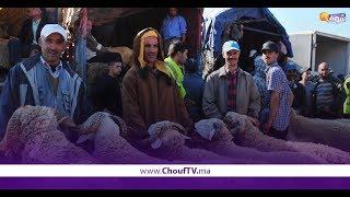 إجــراءات صـارمة لشراء أضحية عيد الأضحــى   |   زووم
