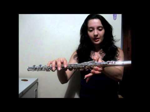 Notas / Posiçoes na Flauta Transversal