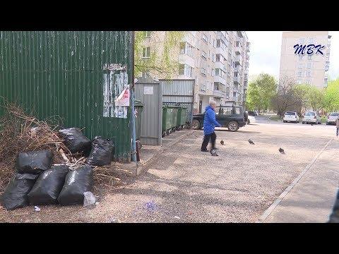 Бердчане хотят видеть свой город чистым, но не везде это получается