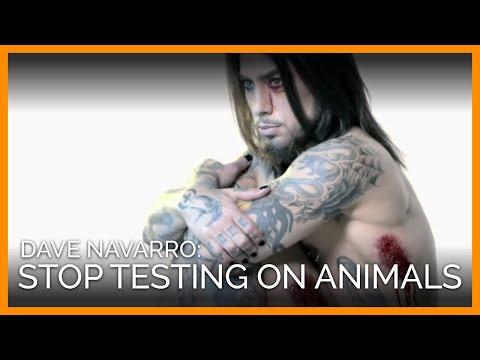 Dave Navarro: Stop Testing Cosmetics on Animals
