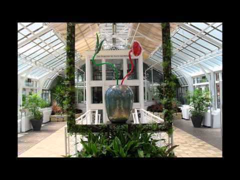 A DAY AT THE FRANKLIN PARK CONSERVATORY