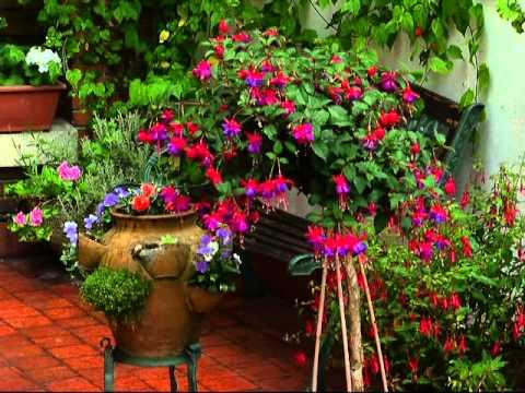 i concurso de jardines en terrazas y balcones de gijon