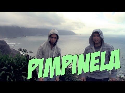 """Jovens madeirenses PARTEM TUDO com """"Pimpinela"""", o primeiro reggaeton PIMBA da história!!"""