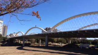 Man Rides Bike over Bridge Arches