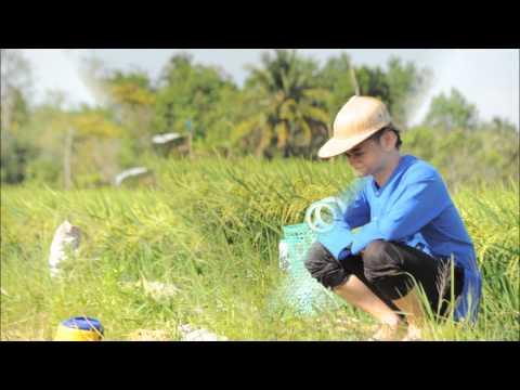 Gặp Mẹ Trong Mơ - Don Nguyen