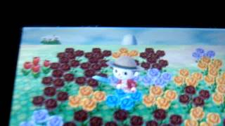 How To Make Blue Roses In Animal Crossing New Leaf