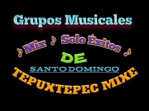 TEPUXTEPEC GRUPOS DE LA REGION MIXE OAXACA (MIX 2014)