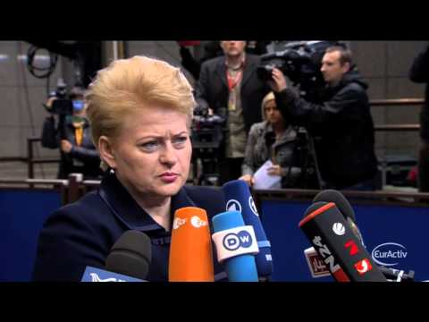 Grybauskaitė: EU expects to reach free trade deal with Ukraine