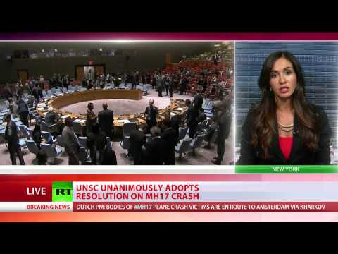 UN Security Council unanimously adopts resolution on MH17 crash