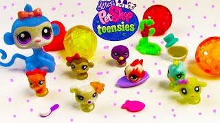 LPS Teensies Littlest Pet Shop Tiny Baby Mystery Surprise