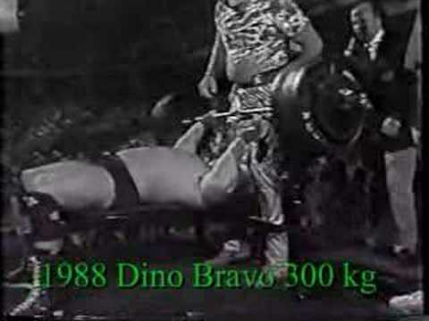 Monsters Of Steiner Hawk Animal Dino