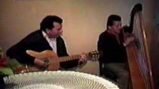Camilo Zuñiga Y Mario Garcia Arpa Tonadas Chilenas