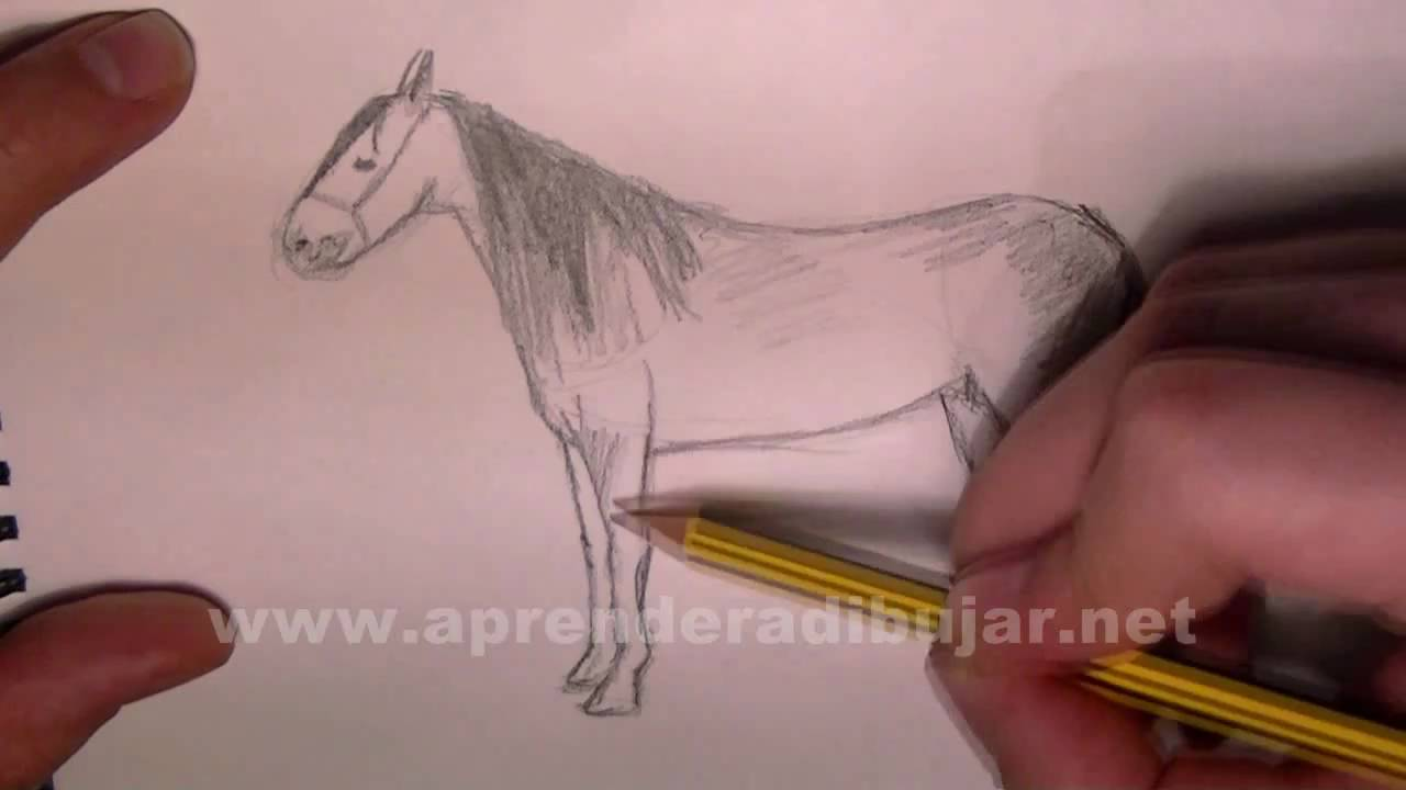 Como dibujar un caballo a lapiz paso a paso - Dibujos de ...