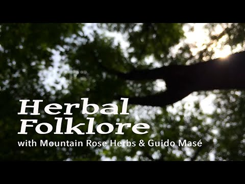 Herbal Folklore: Juniper by Guido Masé