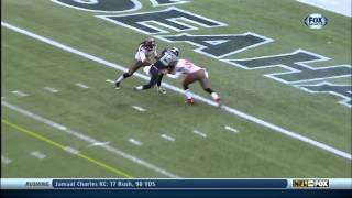 Jermaine Kearse Highlights(2013)