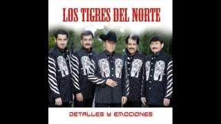 Mejores Grupos De Musica NORTEÑA Mexicana En La Historia