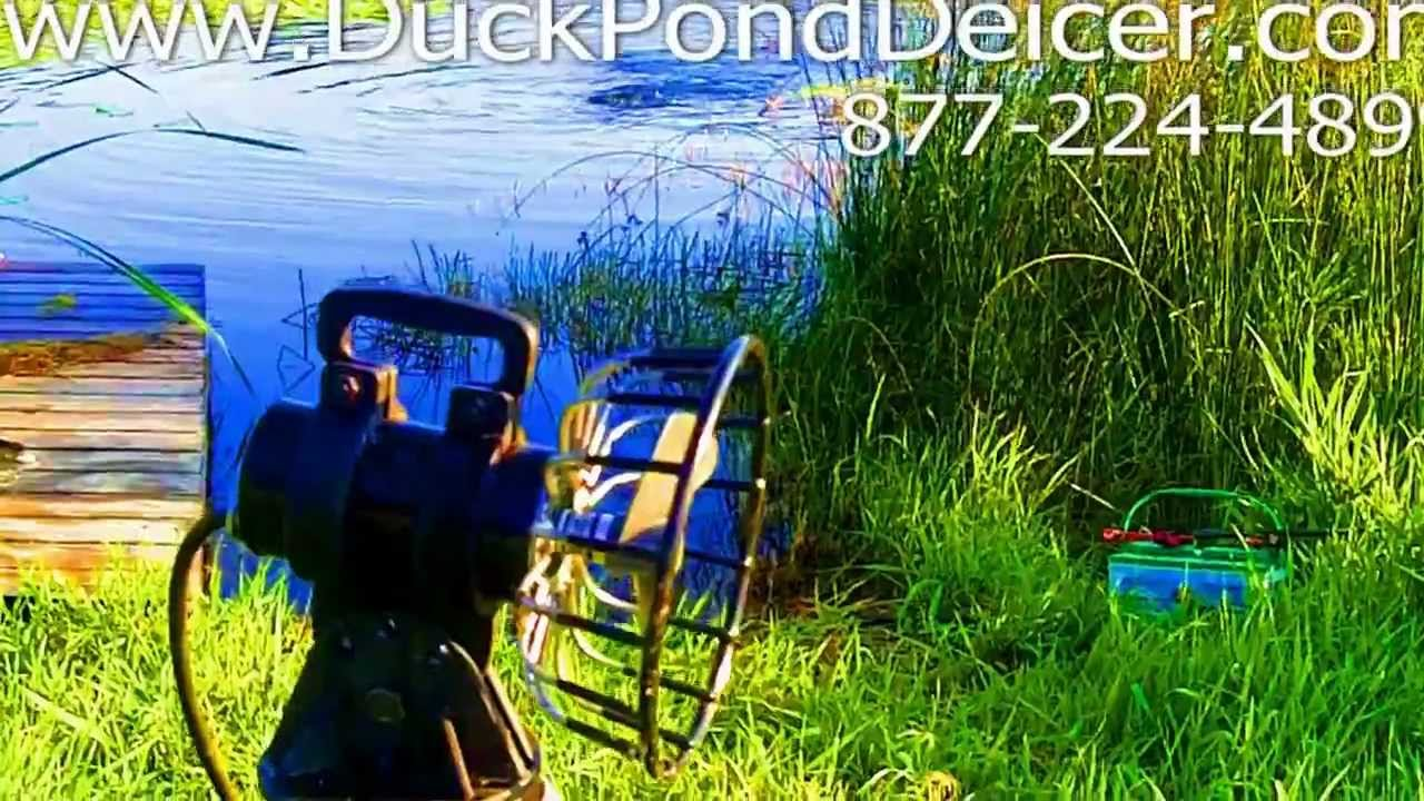 Duck pond deicer keeps pond water from freezing youtube for Koi pond freezing