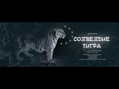 «Сузір'я Тигра»: зміни себе - і зміниться навколо світ...