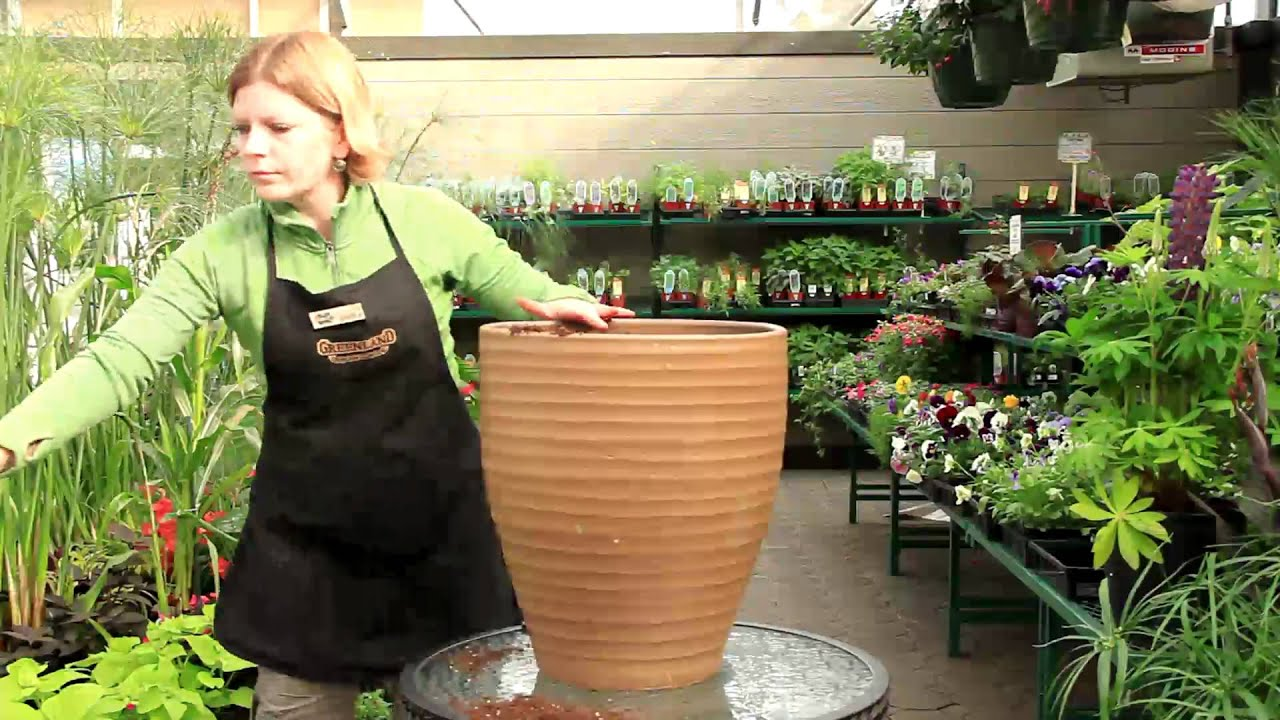 Container Gardening For Beginners Youtube