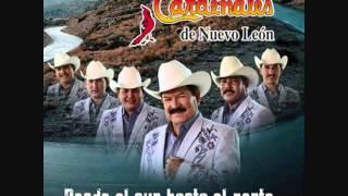 Mis dos amores (audio)  Cardenales de Nuevo Leon