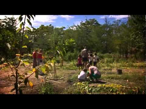 La emergencia de la agricultura urbana