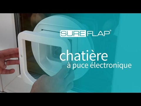 installation de la chati re sureflap dans du verre youtube. Black Bedroom Furniture Sets. Home Design Ideas