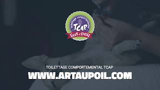 Toilettage Comportemental Art au Poil TCAP