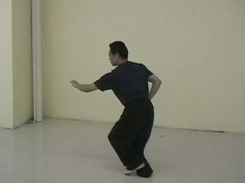 teaching footage: xing yi, ba shi-part of