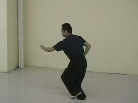 teaching footage: xing yi, ba shi-part of