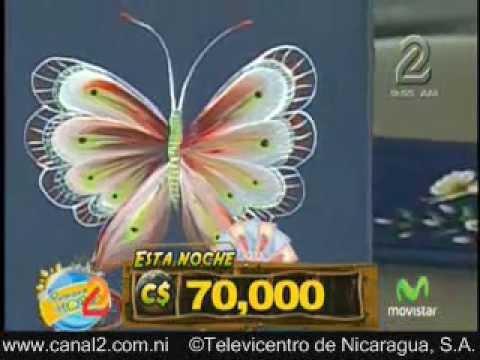 Pinceladas,  Mariposa