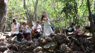"ARAMBOLLA - ""THE BANYAN TREE"" from Dreamland (Live in the Jungle)"