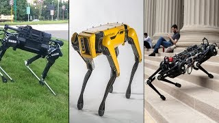 3 Amazing Intelligent Robot Dogs In This Modern Age - Best Robot Pets With Artificial Intelligence.