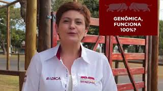 Senepol #ADICA – Ep. 21