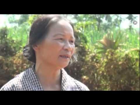 VTC14_Tuyên Quang: Đường bị phá nát vì khai thác quặng