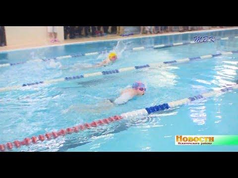 Первенство и Чемпионат Искитимского района собрал более 80 спортсменов