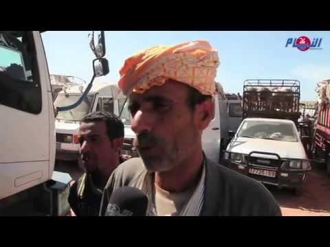 غلاء الأضحية يلهب جيوب المواطنين أيام قبل العيد