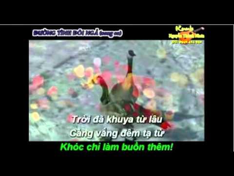 KARAOKE   DUONG TINH DOI NGA    song cs nhe