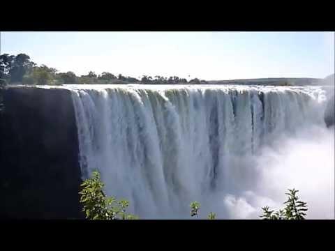 Botswana, il regno degli animali