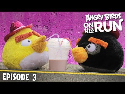 Angry Birds- Na útěku - 3 - Malý žralok