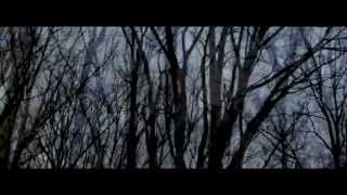Yosi Horikawa - Stars (Official Video) directed by GAREN view on youtube.com tube online.